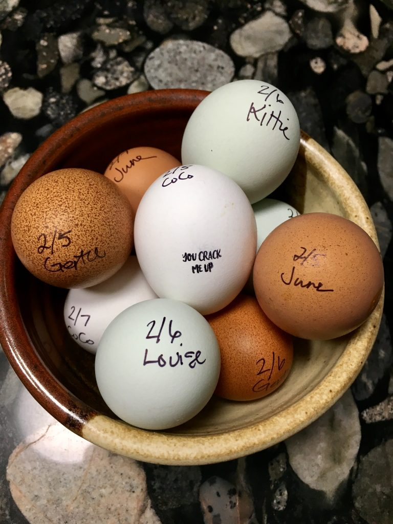 fresh eggs for sale keep track by labeling them