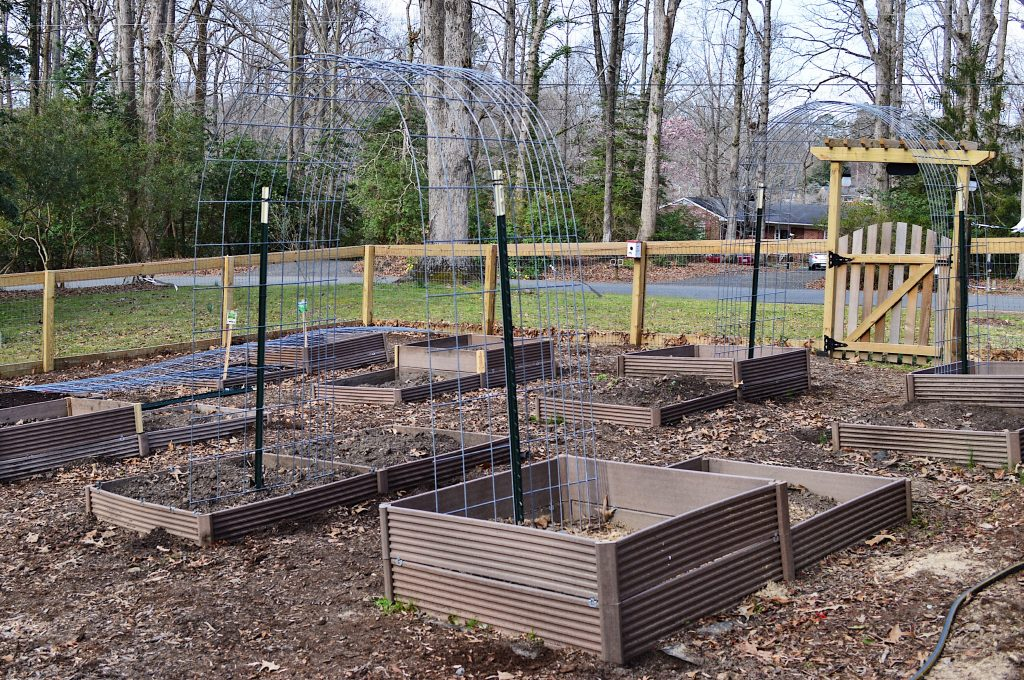 Garden prepping planting seeds and building raised beds and trellis. #seeds #tomatoes #gardening #homesteading $trellisgardening #Trellis #Raisedbeds #gardenbeds #Fence #fencing #gardengate #knowwhereyoufoodcomesfrom #organicgardening #gardening #burpeestarterkit #samsclub