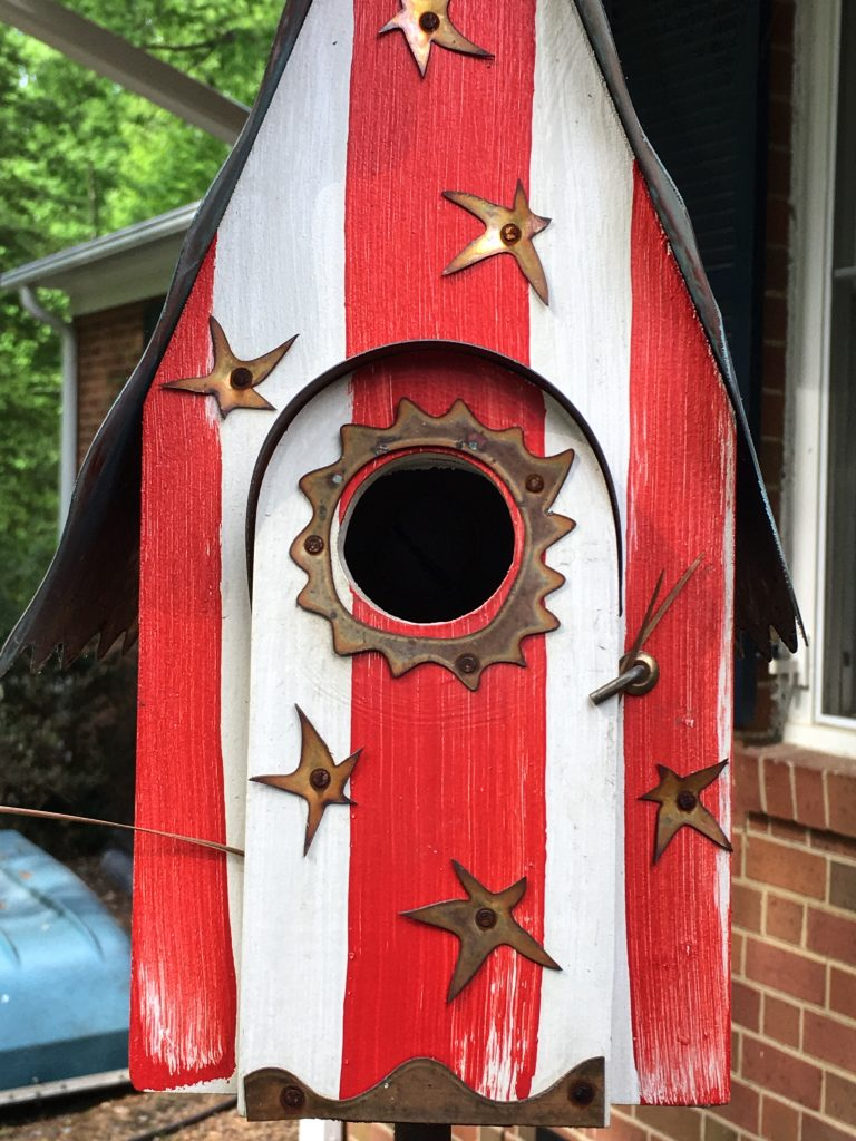 Fly away home bird house #flyawayhome #birdhouse #nesting #housefinch #birdwatching #birdwatch2019
